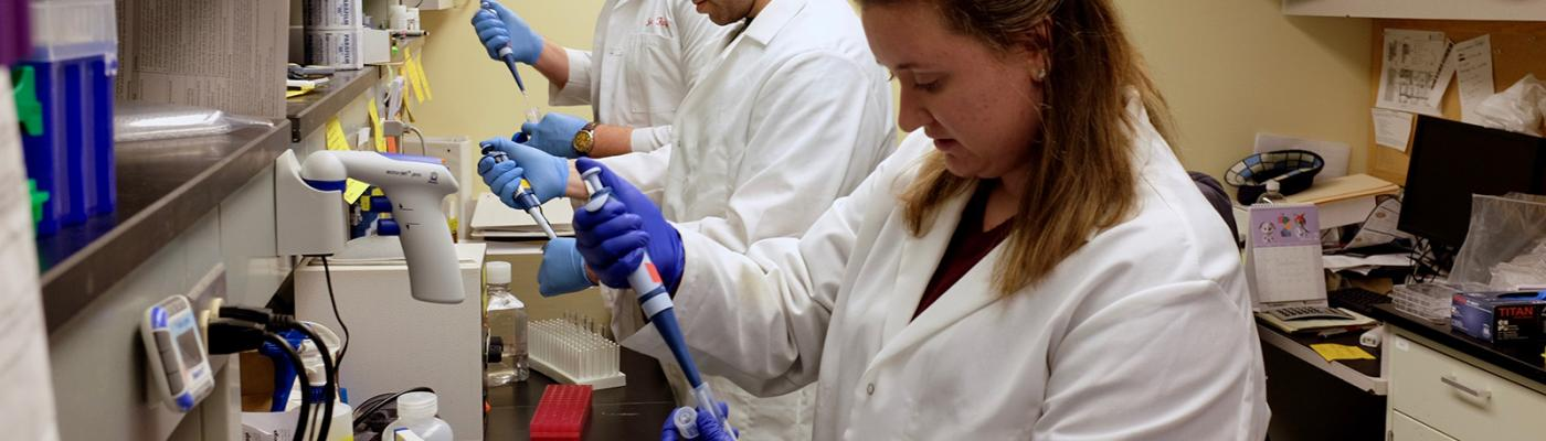 UChicago researchers work in the lab